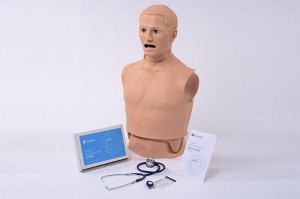 S315.200 Heart and Lung Sounds Adult Torso