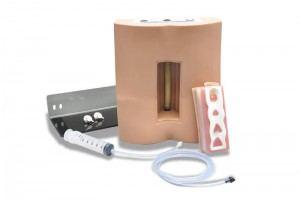 S411 Lumbar Puncture Trainer