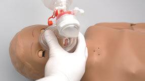 Gaumard® Scientific- The New NOELLE® S550.100 Birthing Mechanism