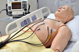 HAL® S1020 Emergency Care Simulator
