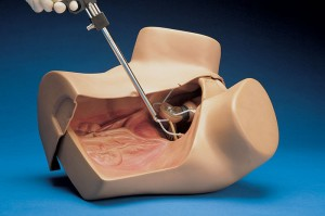 S504.100 ZOE Gynecologic Simulator