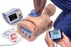 HAL® S315.500 Adult CPR+D Skills Trainer Torso