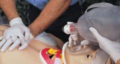 Gaumard® Scientific- The New Trauma HAL® S3040.100 Birthing Mechanism